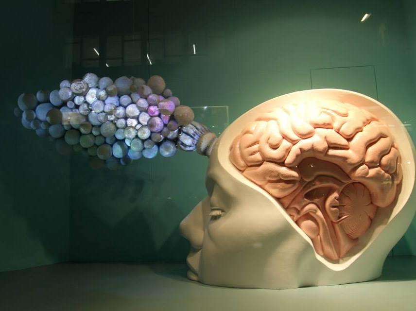 External Brain by Agi Haines