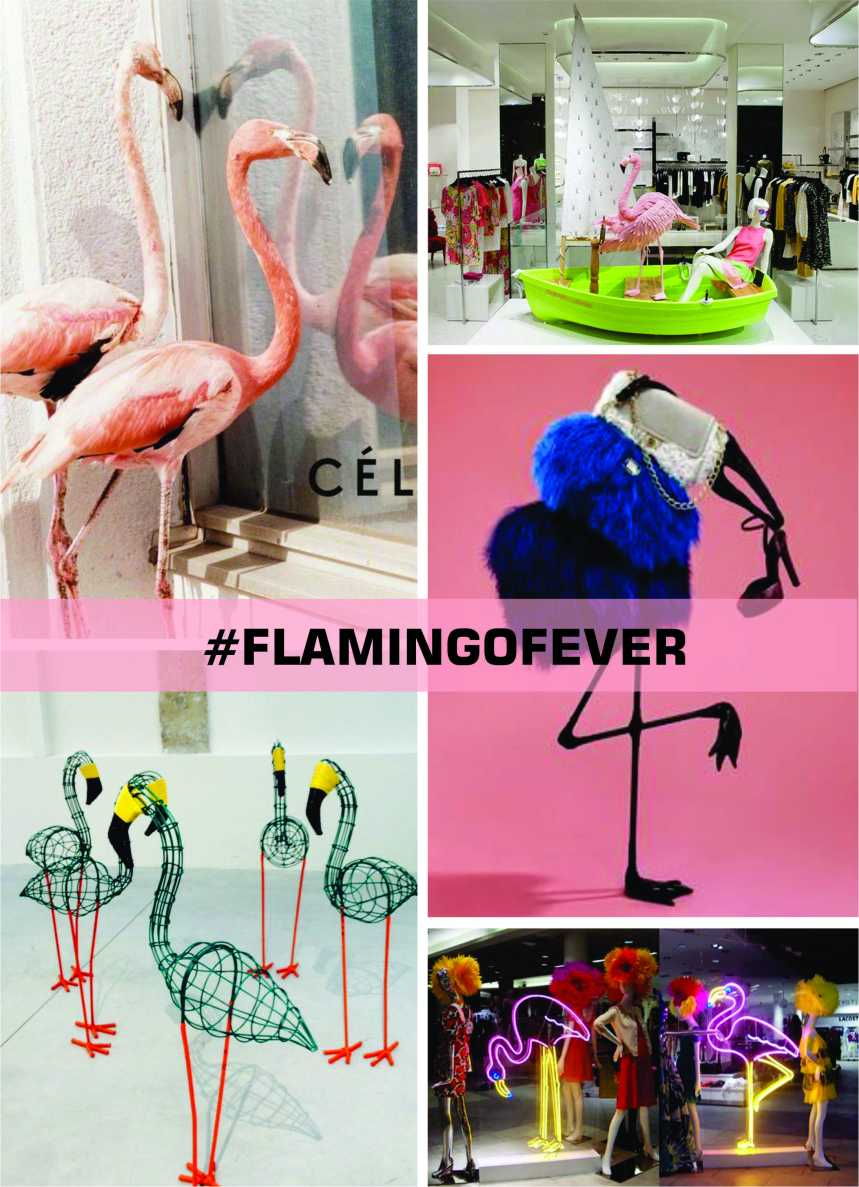 WVC-FlamingoFever-moodboard